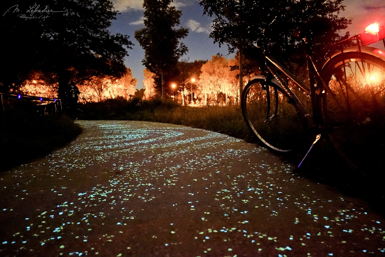 cycle on the van gogh path