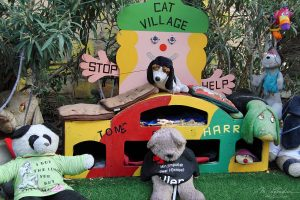 The Cat Village in St Julians in Malta : a home for stray cats