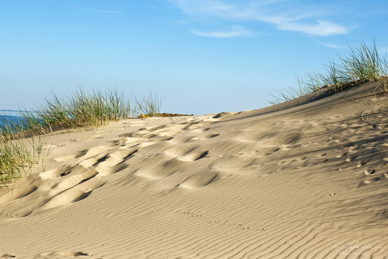Lithuania: immerse yourself in the dunes in Nida