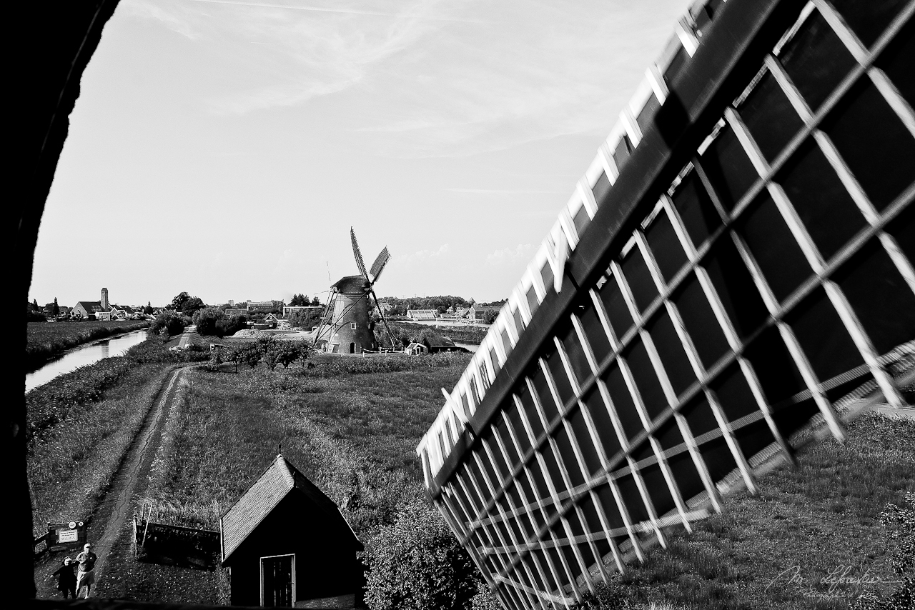 Netherlands: bike through the windmills in Kinderdijk