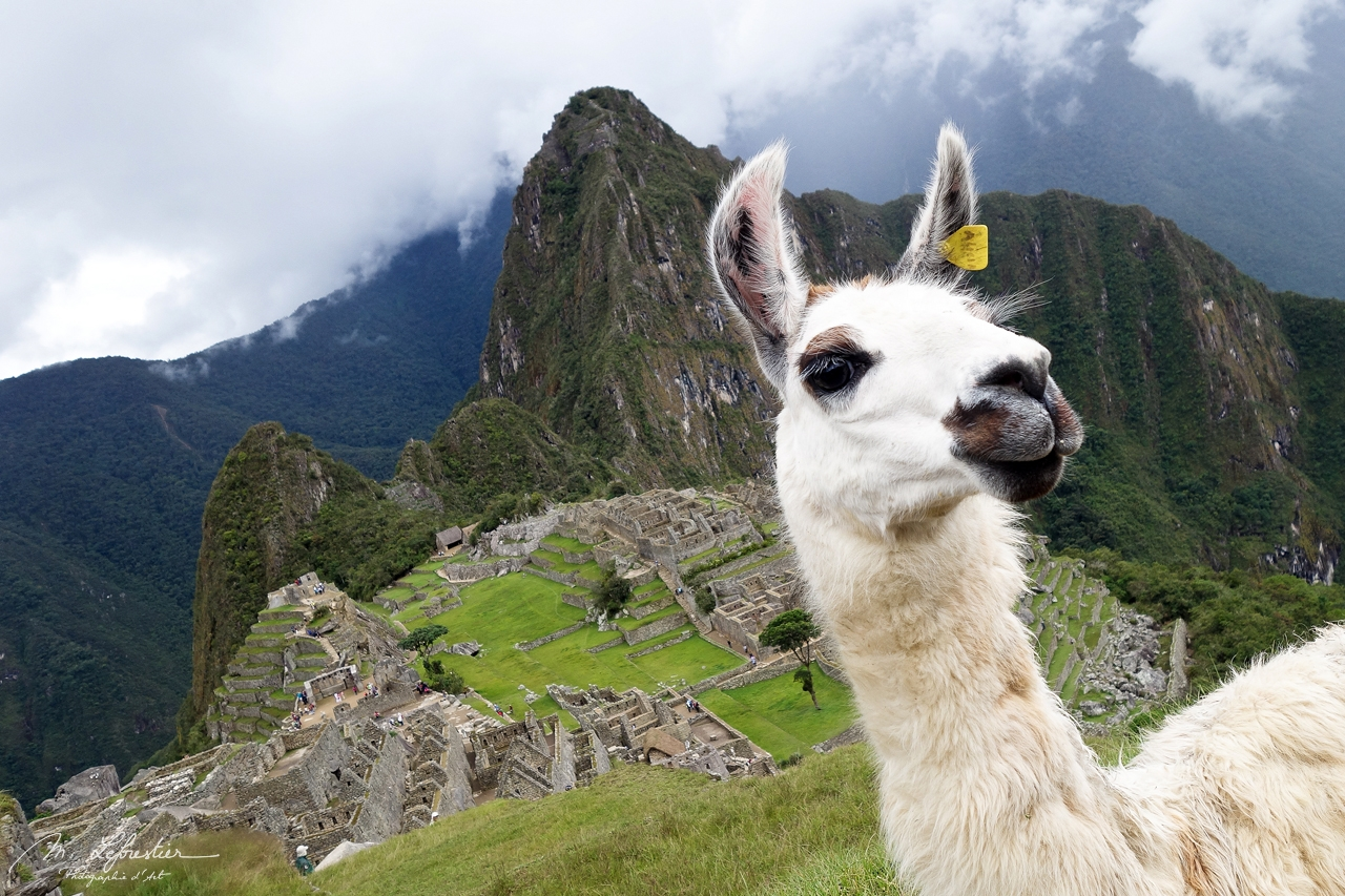 Peru: walk on the Incas footsteps at the Machu Picchu
