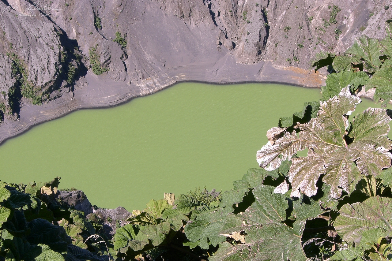 Costa Rica: walk to the active crater of volcano Poas