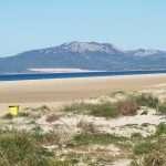 a yellow litter bin in Tarifa Spain
