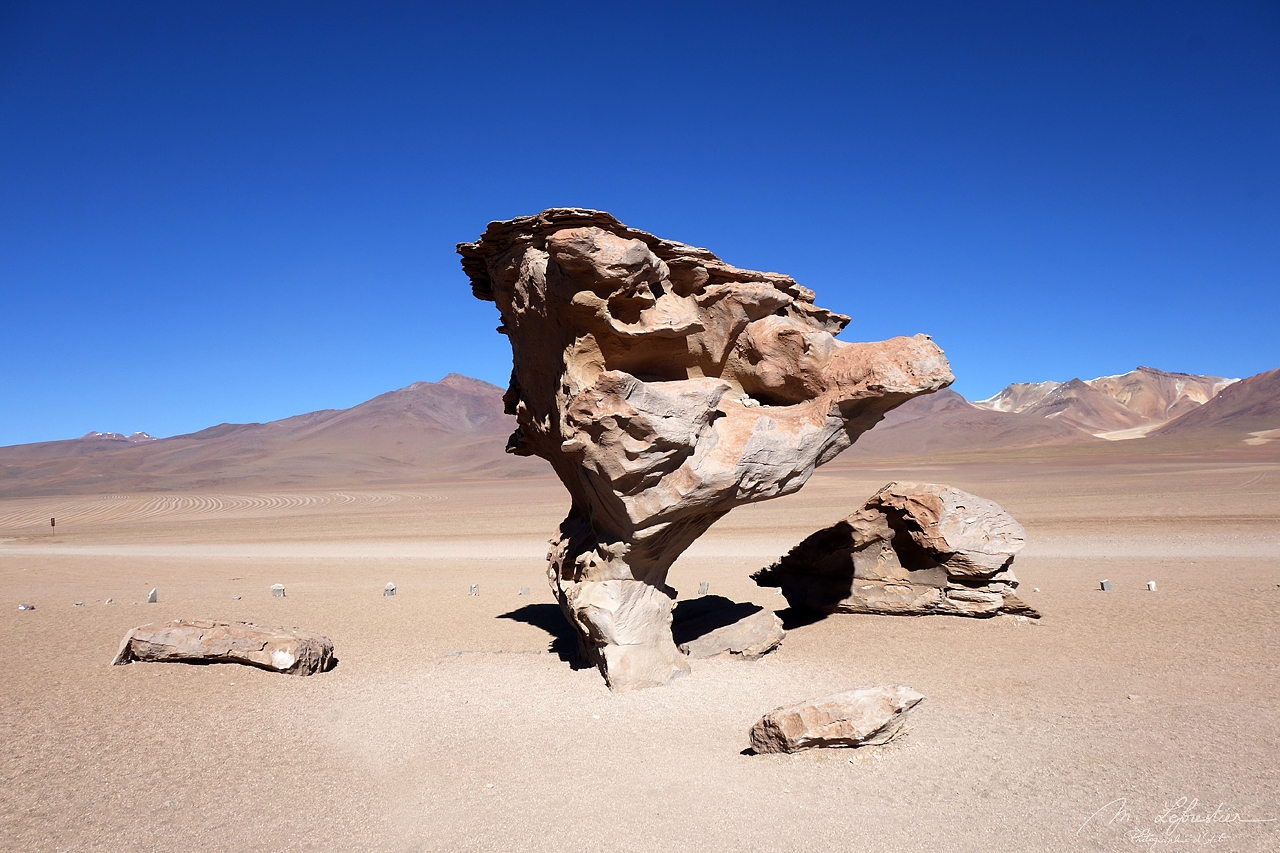 Bolivia: see surreal rock formations and the arbol de piedra in the Siloli desert